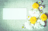 istock Garden flowers over  baby blue  background with empty note 993025520