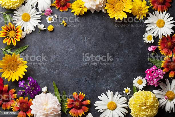 Garden flowers over stone table background picture id603853610?b=1&k=6&m=603853610&s=612x612&h=xmgr2aecwkhyieg hn4miv30f7fs0we35xrlvfhptpu=