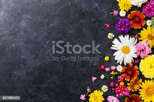istock Garden flowers over stone table background 637890420