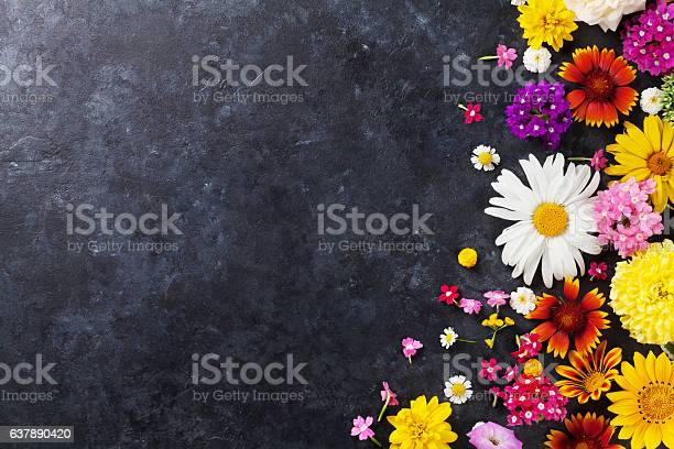 Garden flowers over stone table background picture id637890420?b=1&k=6&m=637890420&s=612x612&h=z9t7ndbwu7qhbbw2vurix ac6fsdwrsrsdof7hh3meo=