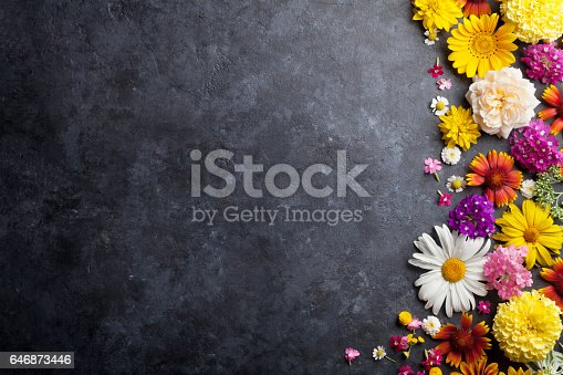 istock Garden flowers over stone table background 646873446