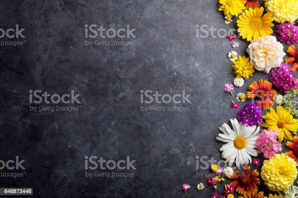 Garden flowers over stone table background picture id646873446?b=1&k=6&m=646873446&s=612x612&h=v4eudino3j x6f9w vsan7jkt2rnfj gybaqifxzqru=