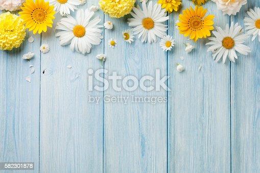 istock Garden flowers over wood 582301878
