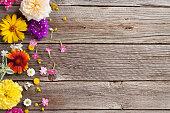 istock Garden flowers over wood 582307102