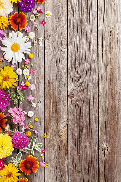 garden flowers over wooden background - holzblumen stock-fotos und bilder