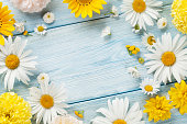 istock Garden flowers over wooden background 586693600