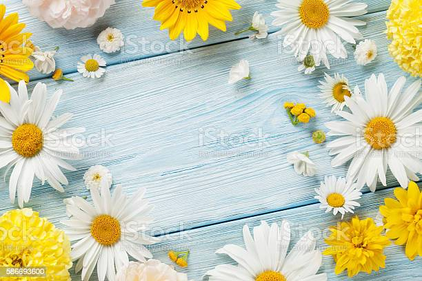 Garden flowers over wooden background picture id586693600?b=1&k=6&m=586693600&s=612x612&h=jppay6qxjbc2t1wwez4reksfsby6c bx2aiahit7xgg=