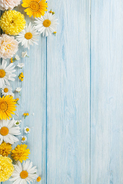 garden flowers over wooden background - 세로 구도 뉴스 사진 이미지