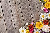 istock Garden flowers over wooden background 598162518