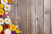 istock Garden flowers over wooden background 598162606
