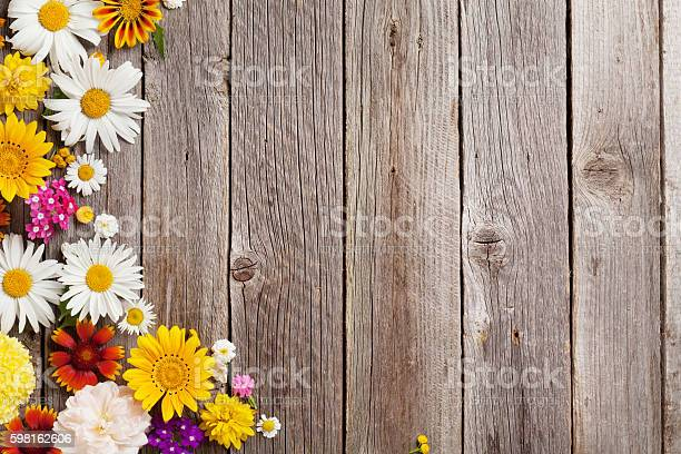 Garden flowers over wooden background picture id598162606?b=1&k=6&m=598162606&s=612x612&h=gqssebposkzivaiyy7ba40w38k qyg1qmv51oyh opy=