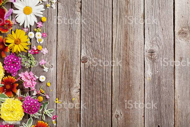 Garden flowers over wooden background picture id637890298?b=1&k=6&m=637890298&s=612x612&h=rt8nukknidbldfxs 7ujgx09bqoid466dt2wznga39k=