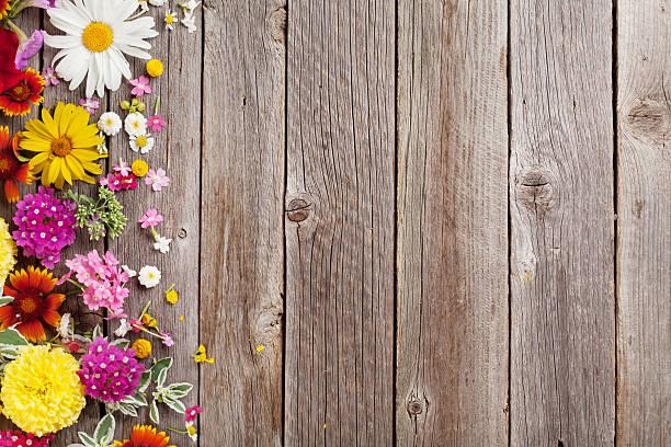garten blumen über hölzerner hintergrund - holzblumen stock-fotos und bilder