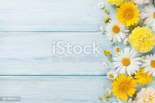 istock Garden flowers over wooden background 637890514