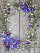 istock Garden flowers over wooden background 815111448