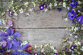 istock Garden flowers over wooden background 815111450
