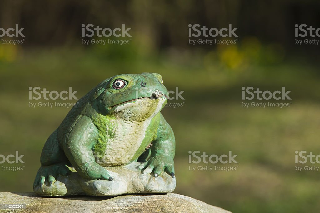 Garden frog waterspout stock photo