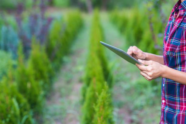 garten-gadget. - garden types stock-fotos und bilder
