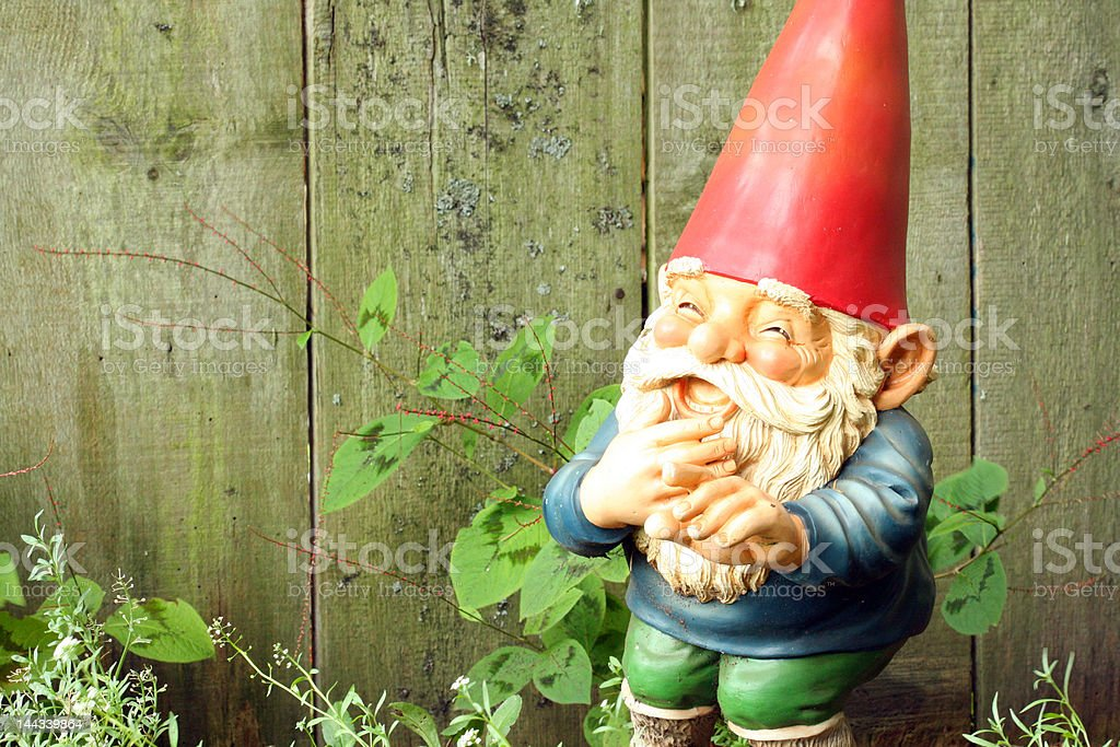 Garden Gnome Laughing stock photo
