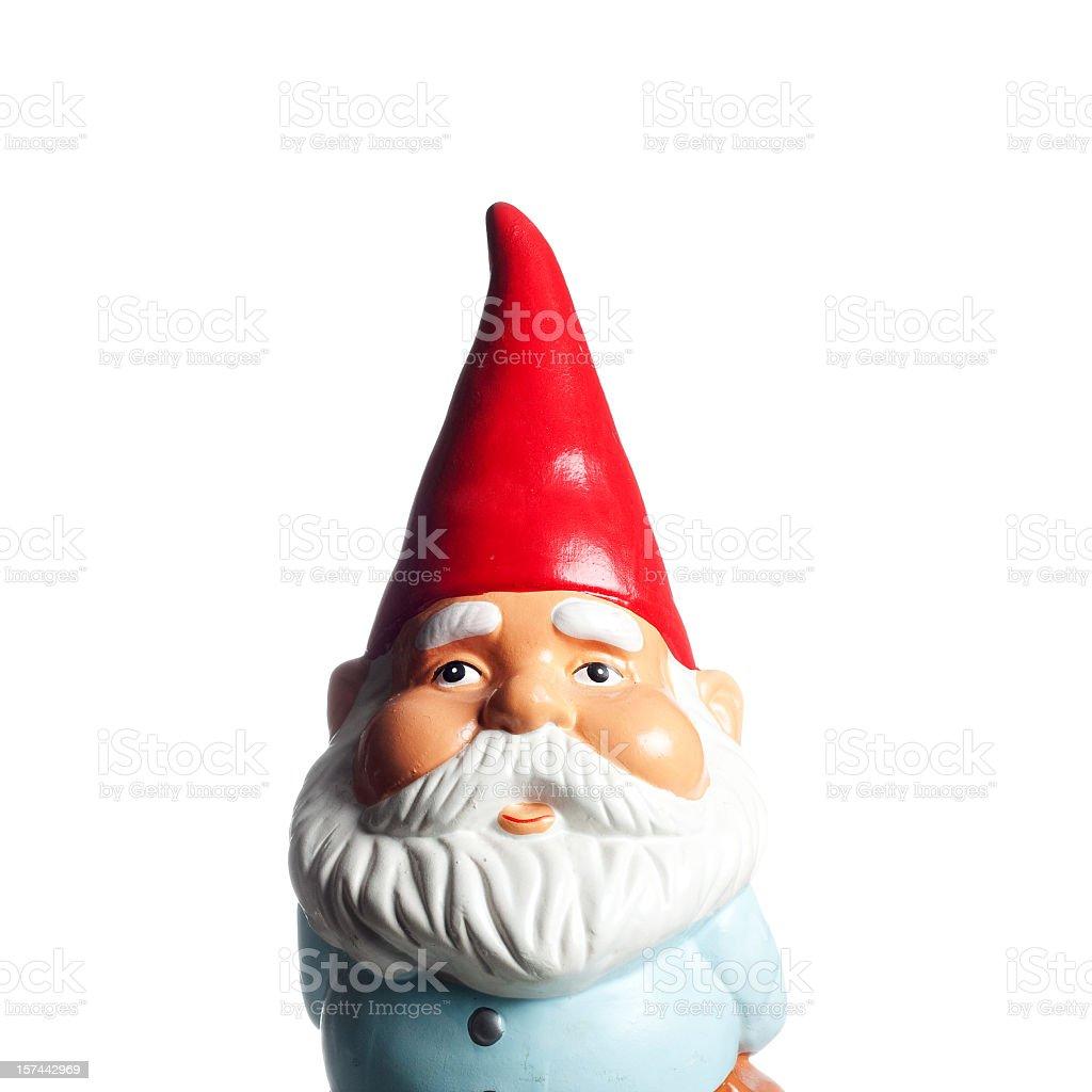 Garden Gnome Portrait stock photo