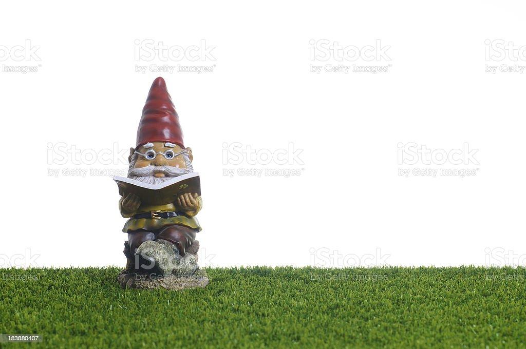 Garden Gnome reading book royalty-free stock photo