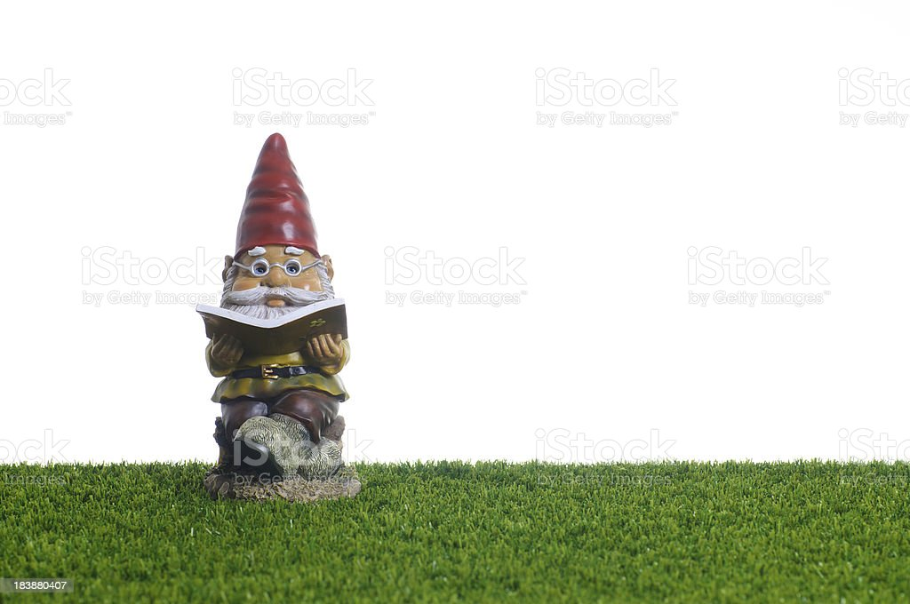 Garden Gnome reading book stock photo