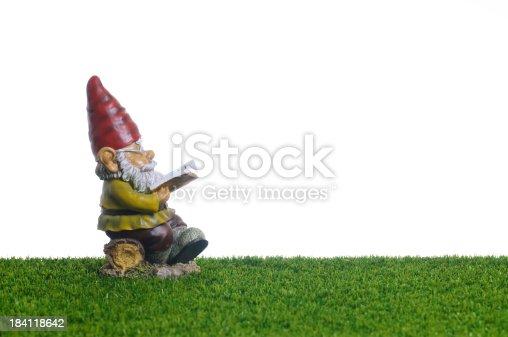 Garden Gnome reading book