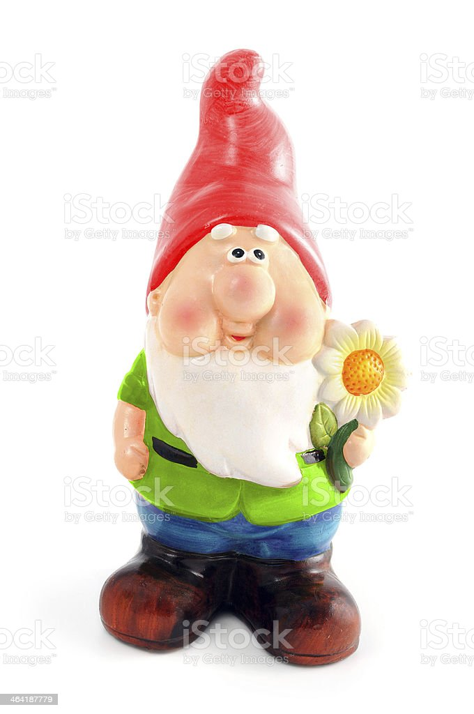 Garden Gnome with flower in hand stock photo