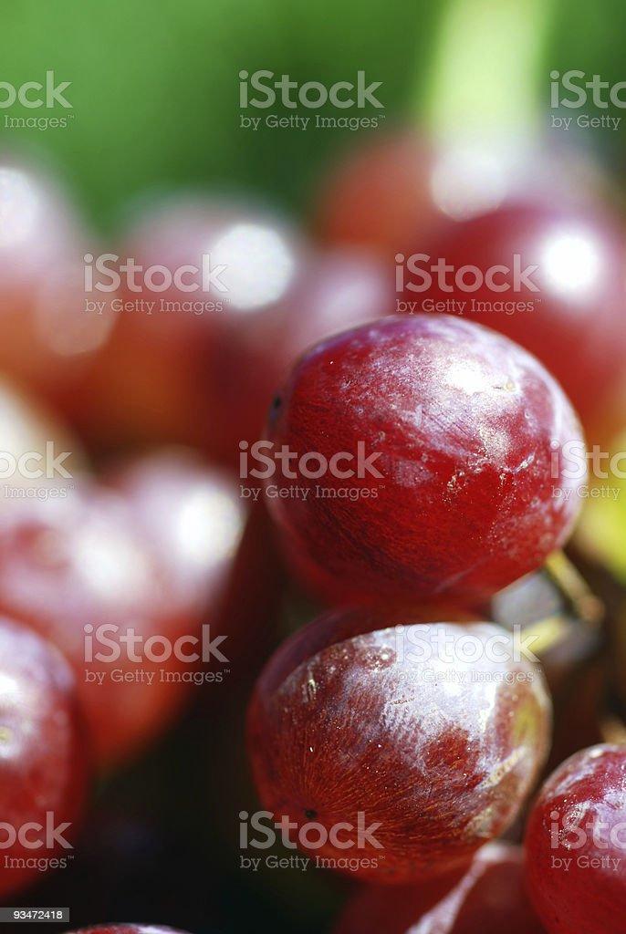 Garden Grapes Macro royalty-free stock photo