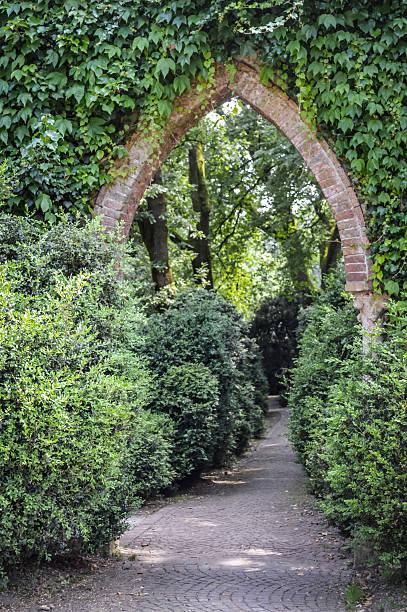 garten grün bogen eingang - der geheime garten stock-fotos und bilder