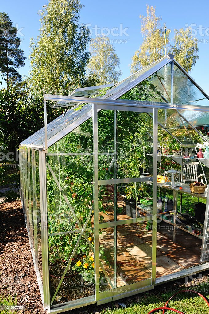 Garden greenhouse in September stock photo