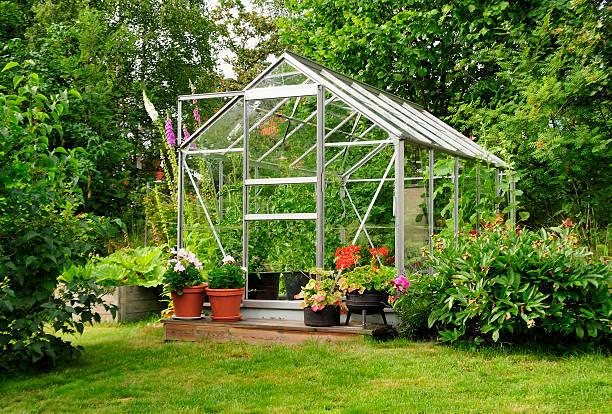сад теплице - оранжерея стоковые фото и изображения