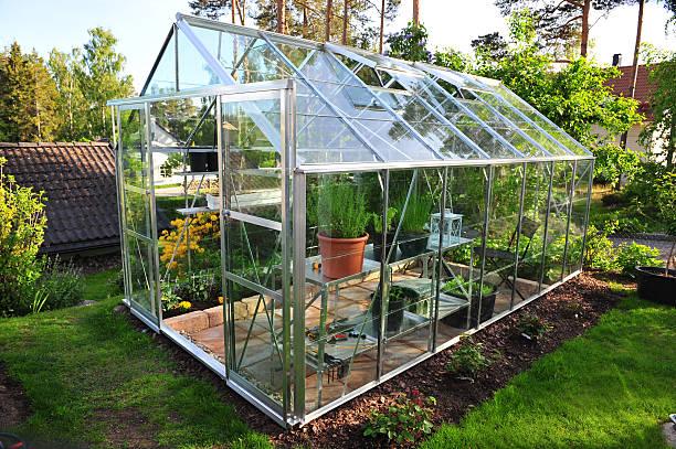 сад теплице - теплица стоковые фото и изображения