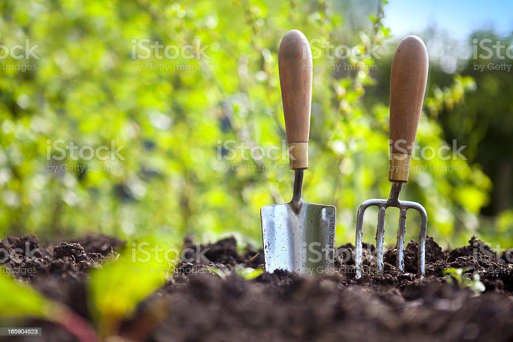 Garden Hand Tools stock photo