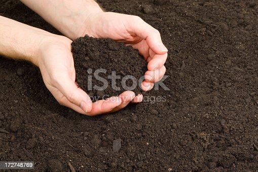 Hands holding dirt in  the garden.