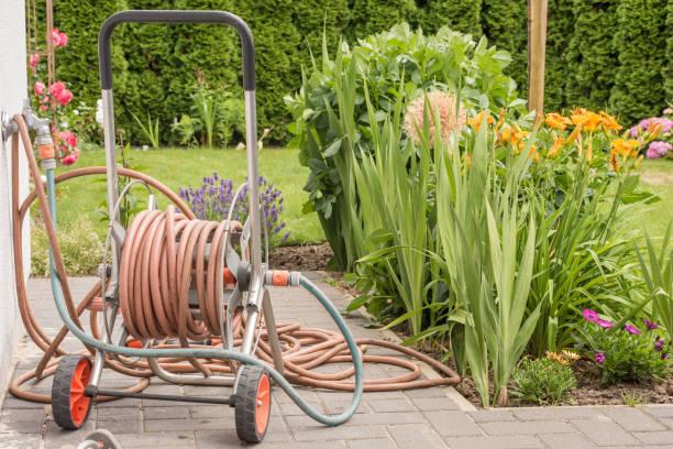 Garden hose on a hose cart in the home garden stock photo