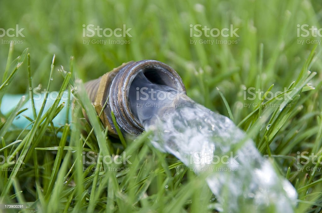 Garden Hose on Lawn royalty-free stock photo