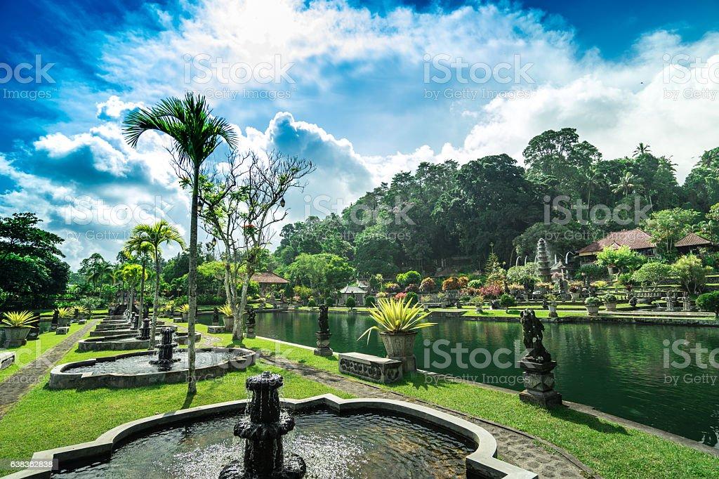 Garden in a temple stock photo