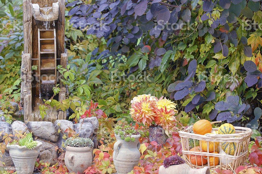 Garden in autum royalty-free stock photo