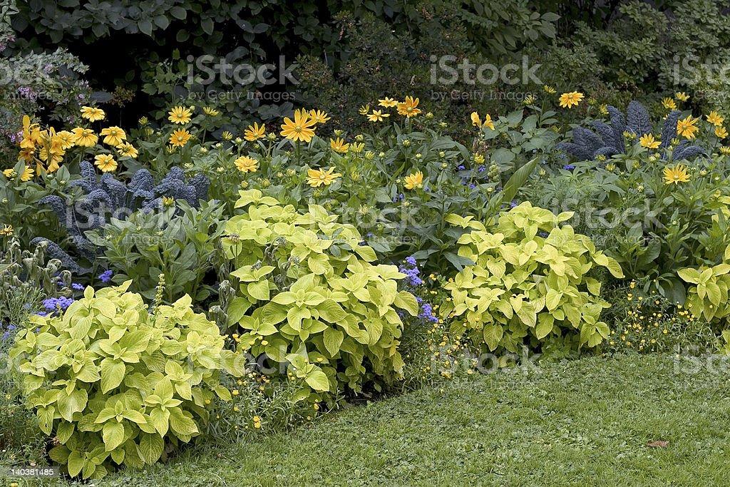 Garden in Bordeaux, France royalty-free stock photo