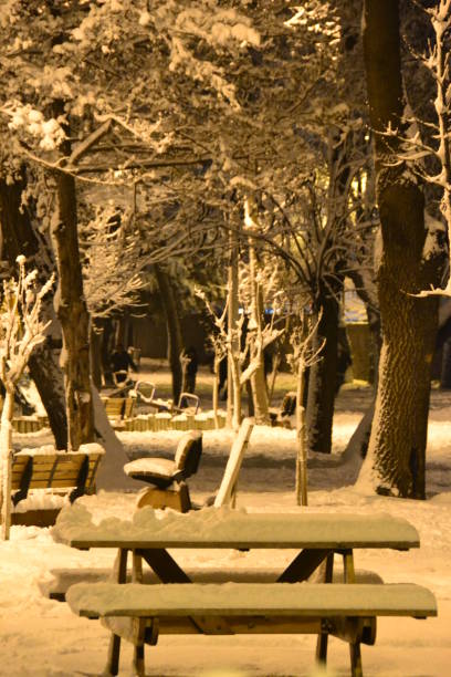 Garden in Istanbul during Snowfall at Night-Turkey stock photo