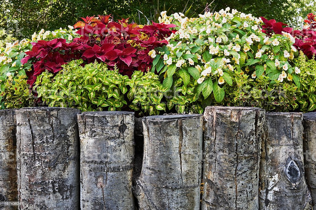 Garden in Raised Bed with Log Retaining Wall royalty-free stock photo