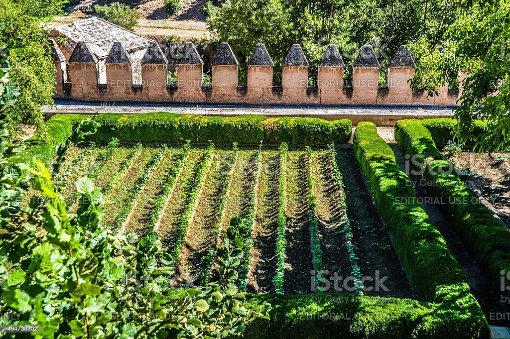 Garden in the Alhambra stock photo