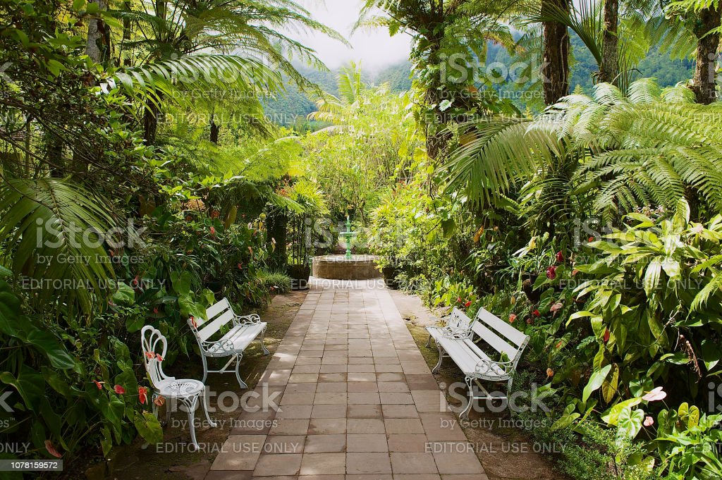Garden In The Oldest Colonial Estate Maison Folio In Hell Bourg, Reunion  Island.