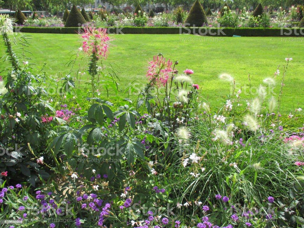 Jardin Classique À La Française photo libre de droit de jardin dans le quartier des