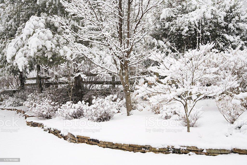 Garden in Winter royalty-free stock photo