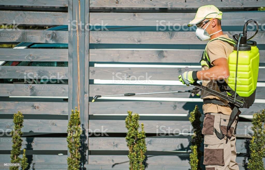 Emprego de inseticida jardim - Foto de stock de Agricultura royalty-free