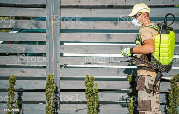 Foto de Emprego De Inseticida Jardim e mais fotos de stock de Agricultura