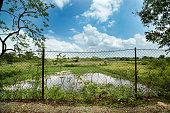 istock garden iron fence 875285428