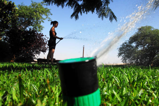 Garden irrigation Woman watering her grassy lawn outside her home. water wastage stock pictures, royalty-free photos & images